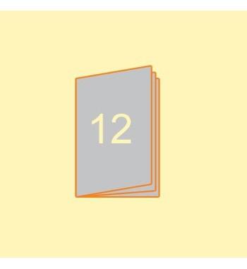 Broschüre A5 hoch, 12 Seiten