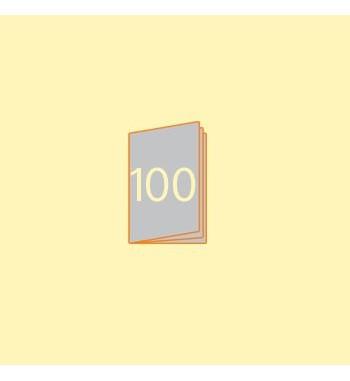Katalog A6 hoch, 100 Seiten