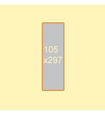 Flyer 105x297 mm 2 Seiten